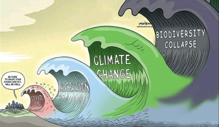 Fourth Wave cartoon by MacKay Cartoons (Covid-19, Recession, Climate Change, Biodiversity Collapse)