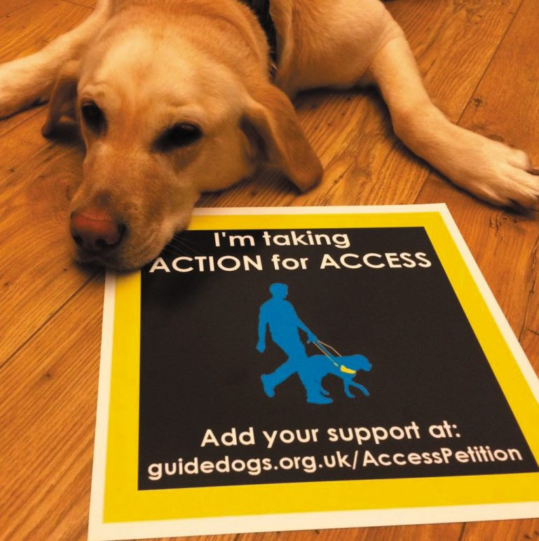 Dog with Guide Dogs Access Petition poster