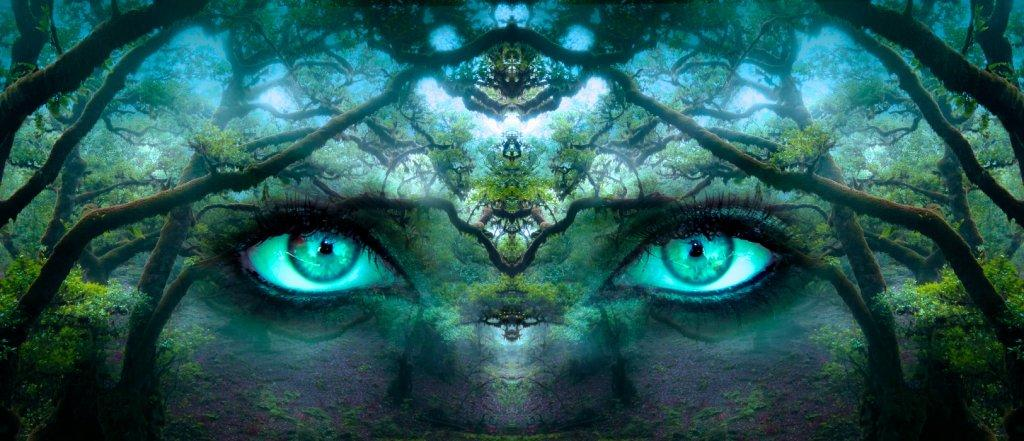 Female eyes have a strong presence in a fantasy forest